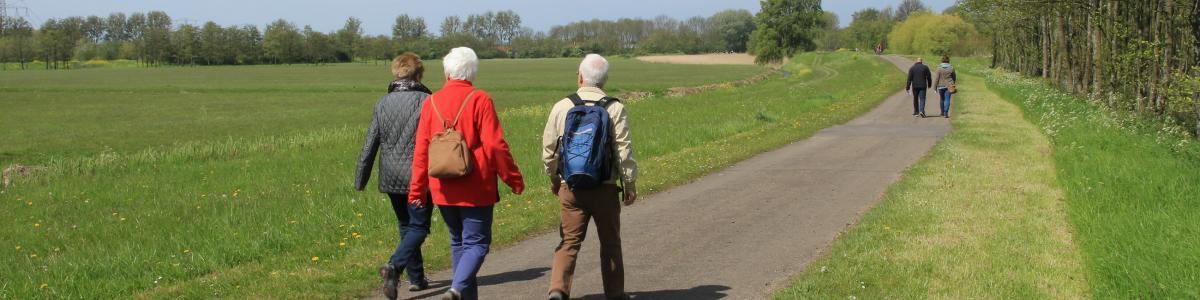 Ældre mennesker på gåtur i grønt område